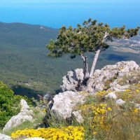 Вид с Крымских гор